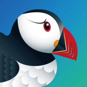 Puffin Fire TV Browser