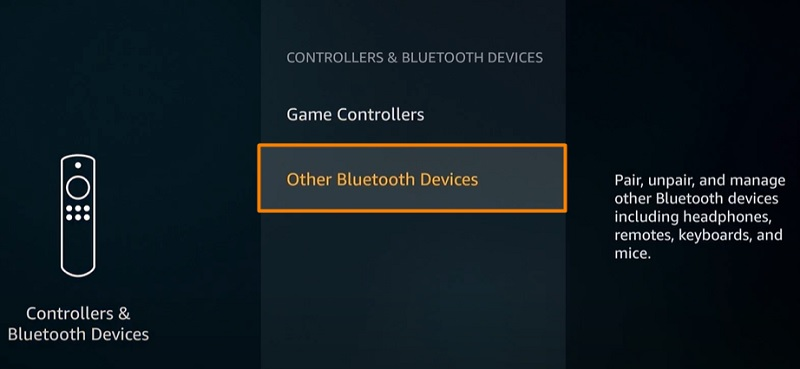 Other Bluetooth Devices